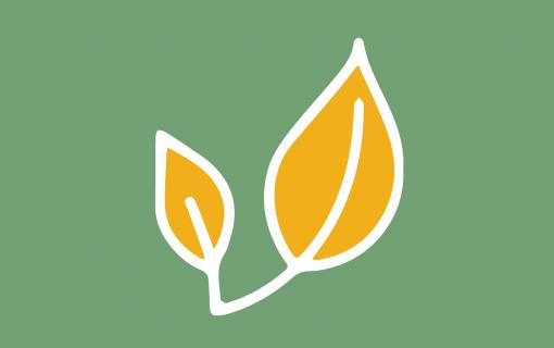 Plant graphic